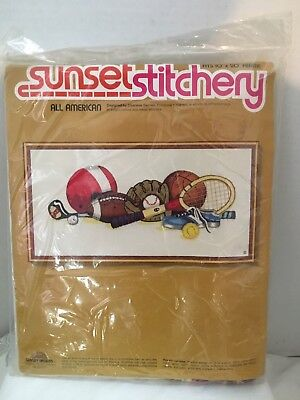 (Sports Equipment Crewel Embroidery Kit All American by Sunset Stitchery 2601 NEW)