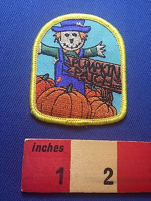 Fun Scarecrow PUMPKIN PATCH Jacket Patch ~ Halloween / Fall Activity - Autumn Halloween Activities