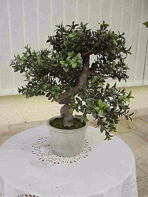 Bonsai Baum Koi Saikei künstliche Pflanzen Bonsai Murraya x7-40cm.hoch