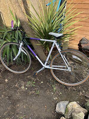 Old Raleigh Pioneer Spirit Men's  Bicycle