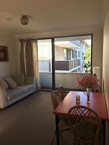 Large One Bedroon Unit for Short Term Rent 15/06/17 - 01/08/18 Randwick Eastern Suburbs Preview