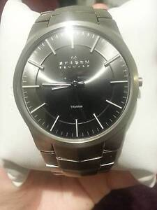 SKAGEN MEN'S TITANIUM WATCH Brisbane City Brisbane North West Preview