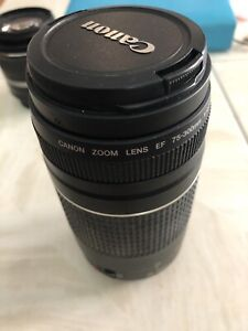 Canon EF 75-300mm 1:4.5-5.6 58mm Digital SLR Camera Lens
