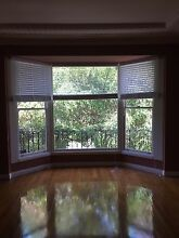 Timber bay window with blinds Northbridge Willoughby Area Preview