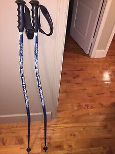 Bâton de ski alpin