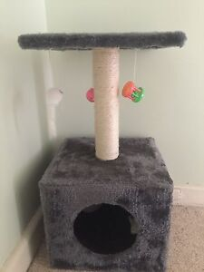 Cat Scratcher and toys Heyfield Wellington Area Preview