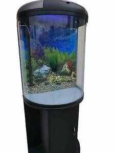 Fish Tank Aquarium 92L with Cabinet $238.00 Blacktown Blacktown Area Preview