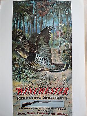 Winchester Shotguns Advertising Poster Grouse in Flight