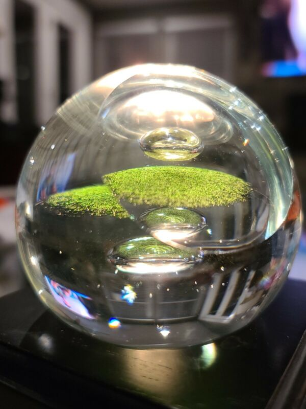 CAITHNESS PAPERWEIGHT REFLECTIONS GREEN, 1975 - LIMITED EDITION