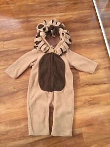 Halloween Outfit - lion - 12-18 Mo In Excellent Condition