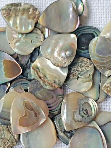 Vintage 250+ Abalone Plaque Cabochons - Small Hearts