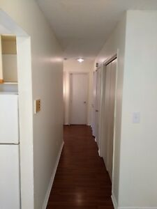 2 bedroom newly renovated hydro included