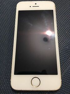 iPhone 5s 16g (low ballers will be ignored)