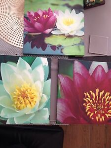 Canvas prints set of 3 Airds Campbelltown Area Preview