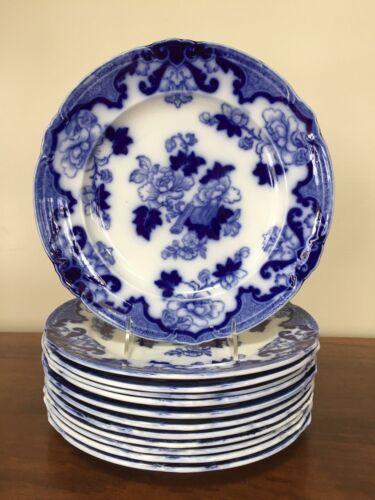 Cauldon CANDIA Flow Blue Dinner Plates ~ Set of 12