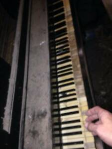 Pianola requires alot of TLC Ryde Ryde Area Preview