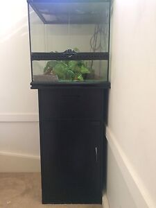 Terrarium need gone ASAP Liverpool Liverpool Area Preview