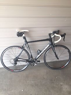 Cannondale full carbon road/race bike  Dee Why Manly Area Preview