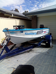 Tinnie 14ft,trailer, 6hp motor Watanobbi Wyong Area Preview
