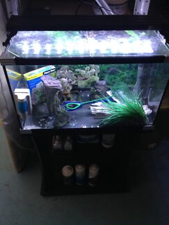 2 ft tropical fish tank set up with stand and accessories
