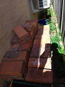 Free paving bricks- clean and good condition. Must collect Leichhardt Leichhardt Area Preview