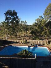 Room for rent, pool, big house, big yard Yatala Gold Coast North Preview