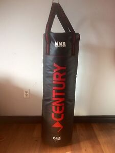 Punching bag and training gloves