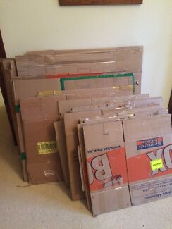 Flattened Moving Cardboard Boxes - 38 total, pick up Clovelly Clovelly Eastern Suburbs Preview