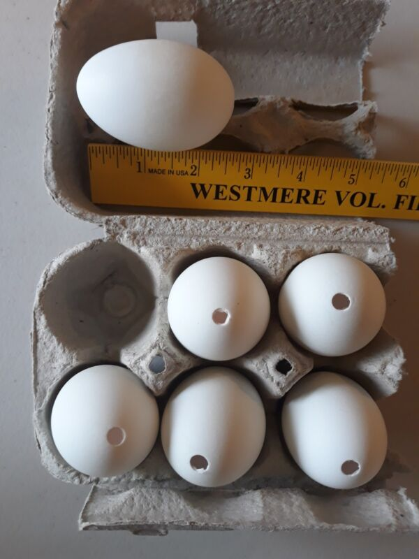 """6 Blown Duck Eggs White with 1 hole 2 1/2"""" long"""