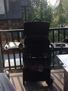Barbecue gas griller.