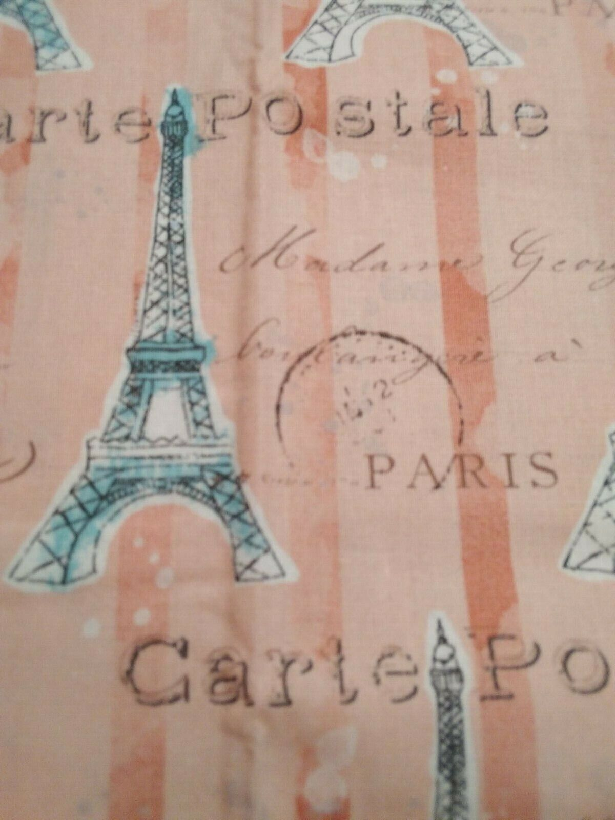 Fabric Paris Print Combo With Matching Buttons - $12.99