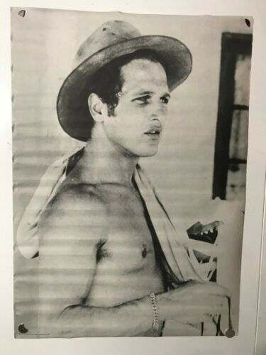 Paul Newman Poster 30 x 42 1969 Vintage Poster Prints Cool Hand Luke Iconic NOS