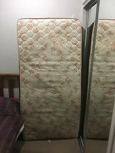 Single bed mattress North Lakes Pine Rivers Area Preview