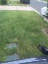 Mick's Lawn Services Petrie Pine Rivers Area Preview