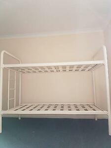 bunk beds $70 and single beds $50 Blackalls Park Lake Macquarie Area Preview