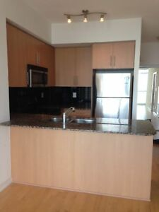 65 Bremner-2Bdrm/2Bth South Facing Condo
