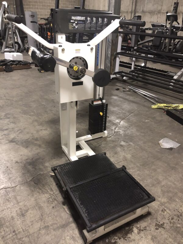 Paramount Multi Hip Machine - SHIPPING NOT INCLUDED