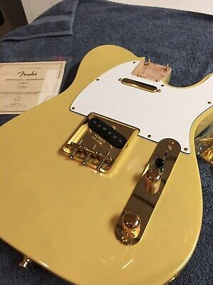 Fender Telecaster body (American Special) with Lindy Fralin Real 54 pickups