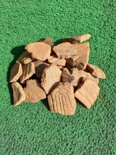 North Georgia Native American Apalachee Creek Indian Pottery Shards  20 Pieces