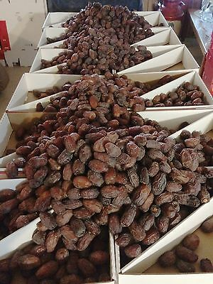 Medjool Dates Fresh 2017 Harvest  California