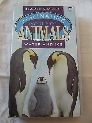 Video VHS PAL Fascinating World of Animals Water and Ice 1995 BBC SM for sale  Shipping to Nigeria