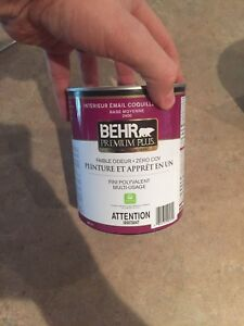 Behr paint 2 different blues