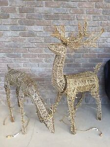 Set of two reindeer Pre-lit Acrylic grapevine