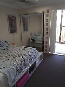 Friendly House in Pimpama Pimpama Gold Coast North Preview
