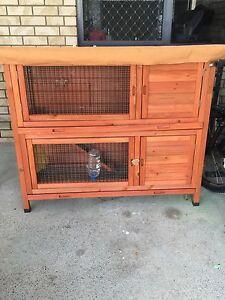 Rabbit rat guineepig hutch Marsden Logan Area Preview