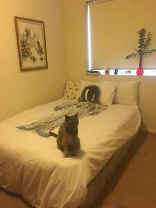 Room Available in Cosy Inner City Apartment North Melbourne Melbourne City Preview