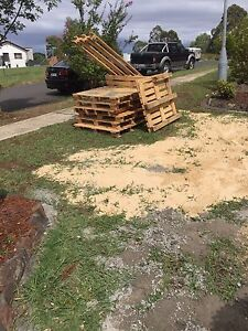 Free timber pallets Bonnyrigg Heights Fairfield Area Preview