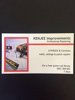 KENJEE Professional Plastering