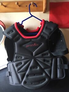 Chest plate $75