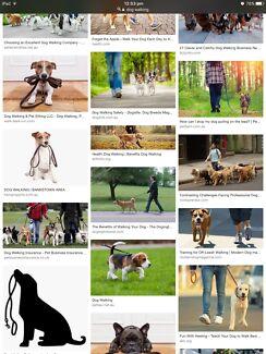 free dog walking
